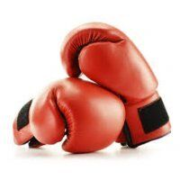 Kick-Boks Handschoenen