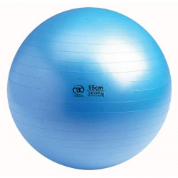 Swiss Ball | 300 kg, 55 cm met pomp en online workout